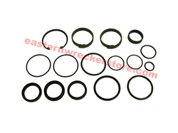 "Jerr Dan hydraulic cylinder seal kit, for cylinders with 3"" ID.  part# 7577250024.  Hydraulics, seals, rings, o, ring, kits, valve, valves, hydraulic, ram, rod, push, roll, tilt, extend, wheel lift, OEM, replacement, parts, accessories, towing, recovery."
